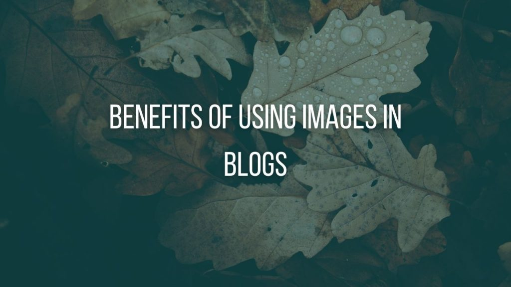 Reasons for using images in the blog posts