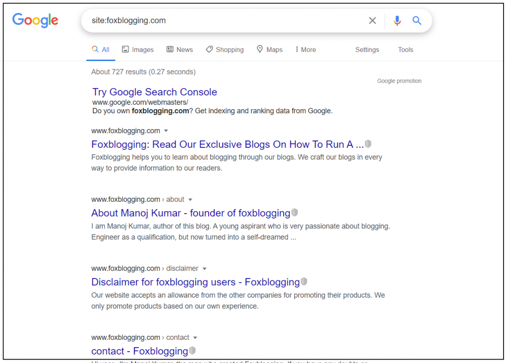 SERP results - indexed pages in google