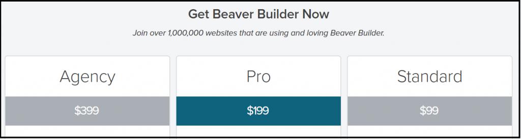 Beaver Builder Plans Pricing